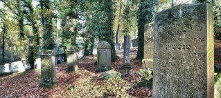 Sonderöffnung jüdischer Friedhof und Synagoge